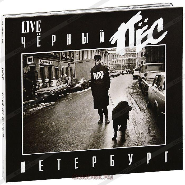 ДДТ  Черный пес Петербург  слушать текст история клип