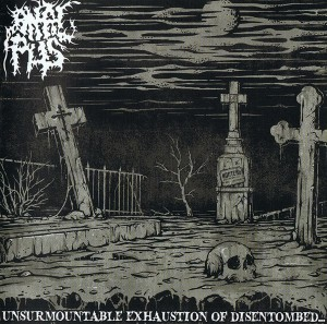Audio CD Anal Pus. Unsurmountable Exhaustion Of Disentombed...