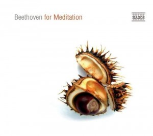 Audio CD Various. Beethoven for Meditation