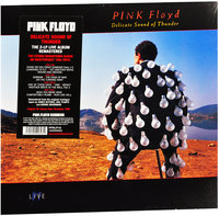 Pink Floyd. Delicate Sound Of Thunder (2 LP)