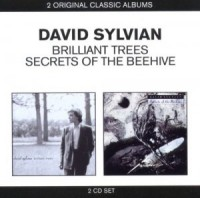 David Sylvian. Brilliant Trees / Secrets Of The Beehive (2 CD)