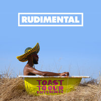 LP Rudimental. Toast To Our Differences (LP)