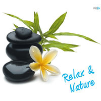 MP3 (CD) Relax & Nature