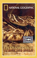 DVD НГО. Гремучие змеи / National Geographic. King Rattler