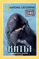 DVD НГО. Киты / National Geographic. Whales in crisis