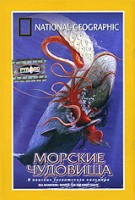 DVD НГО. Морские чудовища / National Geographic. Sea Monsters: Search for the Giant Squid