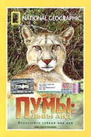 DVD НГО. Пумы: львы Анд / National Geographic. Puma: Lion of the Andes