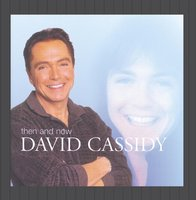 Audio CD David Cassidy. Then And Now