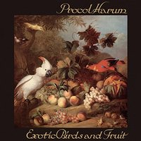 Procol Harum. Exotic Birds & Fruit (CD)