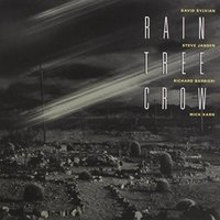 Rain Tree Crow. Rain Tree Crow (LP)