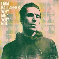 LP Liam Gallagher. Why Me? Why Not. (LP)