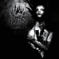 Dark Fortress. Stab Wounds (2 LP)