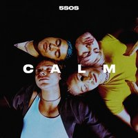 5 Seconds Of Summer. Calm (CD)
