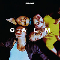 5 Seconds Of Summer. Calm (LP)