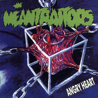 LP Meantraitors. Angry Heart (LP)