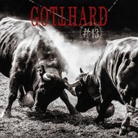 Audio CD Gotthard. #13