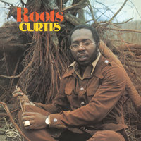 Curtis Mayfield. Roots (LP)