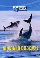 Discovery: Акулы в воздухе (DVD) / Air Jaws II: Even Higher