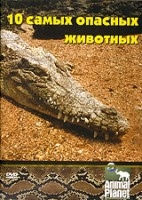 Discovery: 10 самых опасных животных (DVD) / Jack Hanna's Top Ten Places to See Dangerous Animals