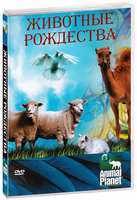 Animal Planet: Животные Рождества (DVD) / Animals of the Nativity