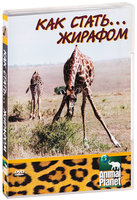 Animal Planet: Как стать... жирафом (DVD) / Growing Up...: Giraffe