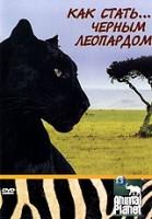 Animal Planet: Как стать... черным леопардом
