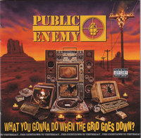 Public Enemy. What You Gonna Do When The Grid Goes Down? (CD)