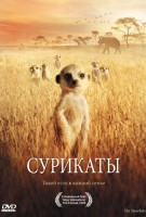 Сурикаты (DVD) / The Meerkats