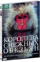 BBC: Королева снежных обезьян (DVD) / Snow Monkeys - Who's Hot and Who's Not