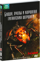 BBC: Будда, пчелы и королева гигантских шершней (DVD) / BBC: The Natural World. Buddha Bees and the Giant Hornet Queen