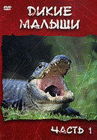 DVD Дикие малыши. Часть 1 / Baby Animals: Life and Secrets. Part 1