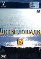 Дикие Лошади (DVD) / Touching Wild Horses