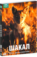 DVD BBC: Шакал / Year of the Jackal