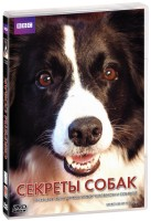 BBC: Секреты собак (DVD) / Secret life of the dog