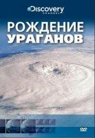Discovery: Рождение Ураганов