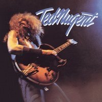 Audio CD Ted Nugent. Ted Nugent