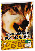 Animal Planet. Прирожденные греховодники (DVD) / Animal Planet: Natural Born Sinners