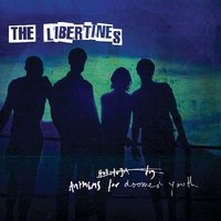 LP The Libertines. Anthems For Doomed Youth (LP)