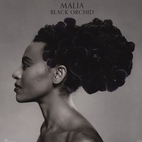 LP Malia. Black Orchid (LP)