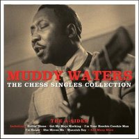 LP Muddy Waters. The Chess Singles Collection (LP)