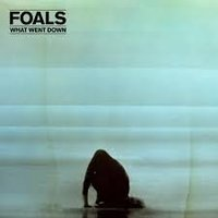 Foals. What Went Down (CD)