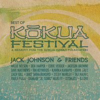 LP Jack Johnson & Friends. Best Of Kokua Festival (LP)