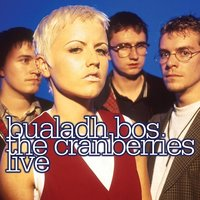 Audio CD The Cranberries. Bualadh Bos. The Cranberries Live