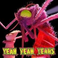 Audio CD Yeah Yeah Yeahs. Mosquito (Deluxe Edition)