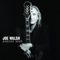Audio CD Joe Walsh. Analog Man