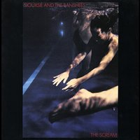 Audio CD Siouxsie And The Banshees. Hyaena (rem+bonus)