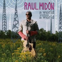 Audio CD Raul Midon. A World Within A World