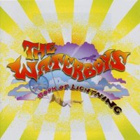 DVD + Audio CD The Waterboys. Book Of Lightning