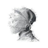 Audio CD Woodkid. The Golden Age