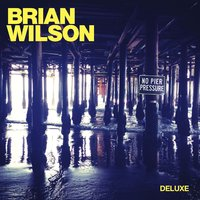 Audio CD Brian Wilson. No Pier Pressure